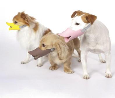 duckbill-shaped-dog-muzzle-0