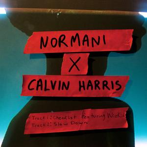 REVIEW: Calvin Harris & Normani, Normani x Calvin Harri