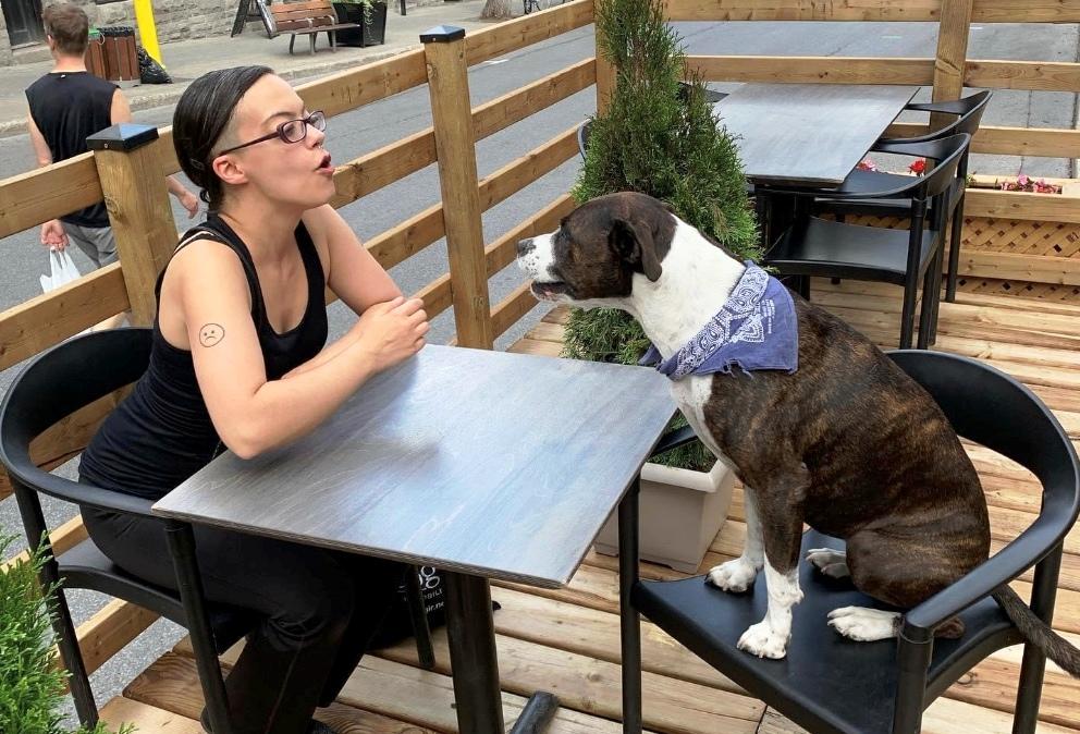 montreal terrasse dogs Turbo Haüs