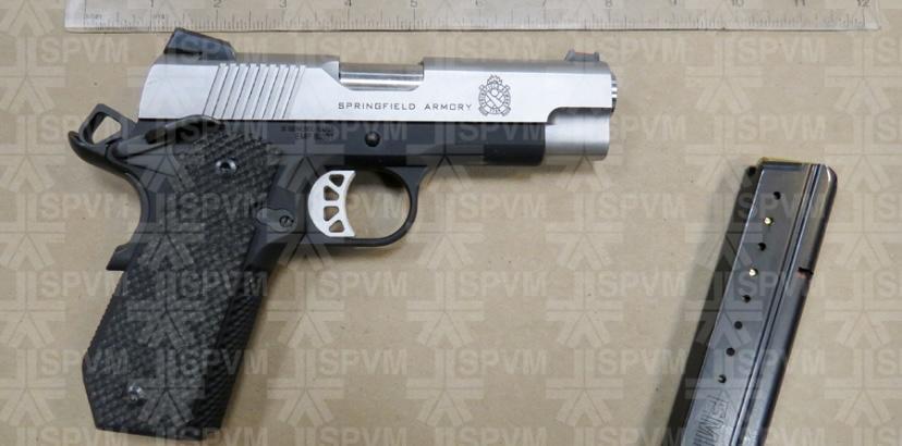 Plante: Bill C-21 should include ban on handguns, mandatory assault weapons buy-back