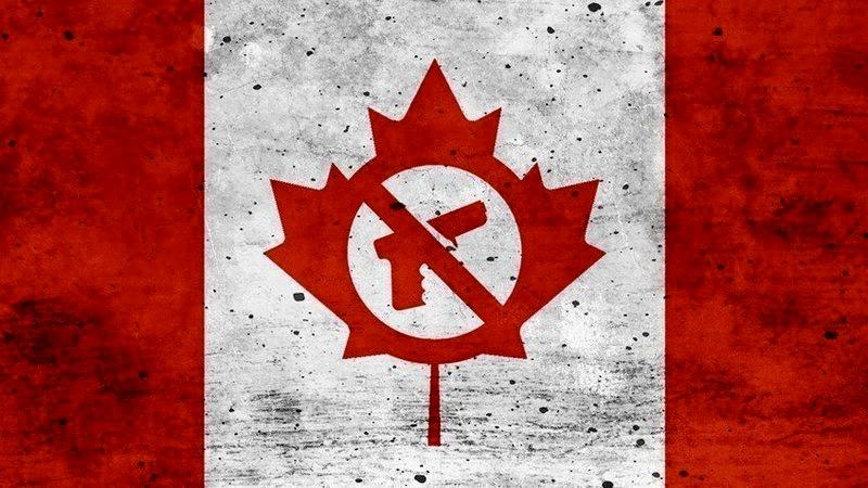 gun control canada united states us
